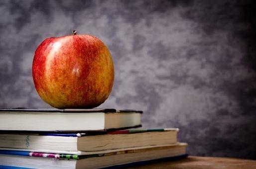Matrícula Digital RJ 2016: pré-escola e fundamental