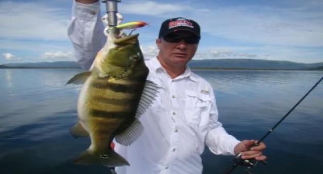 Como pescar, dicas e truques