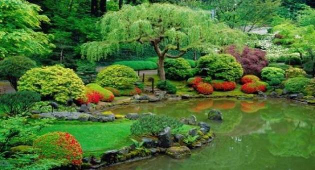 Lago artificial no jardim dicas como fazer for Como construir un lago artificial