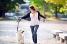 Dicas para passear com o cachorro
